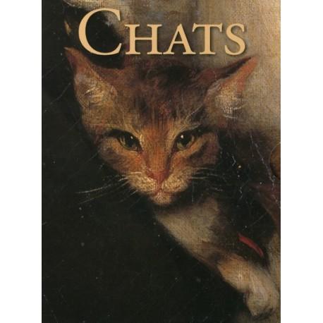 Chats : Coffret 30 cartes perpétuelles & enveloppes