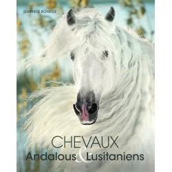 Chevaux andalous et lusitaniens