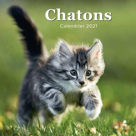 Chatons - Calendrier 2021
