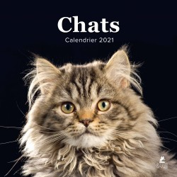 Chats - Calendrier 2021
