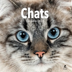 Chats - Calendrier 2022