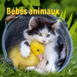Bébés animaux - Calendrier 2022