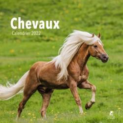 Chevaux - Calendrier 2022